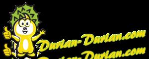 durian durian logo 300x119 Durian Durian Malaysia Logo