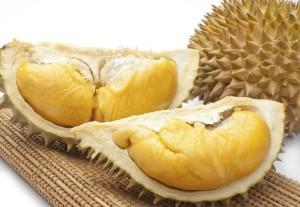durian01 300x207 Durian Malaysia